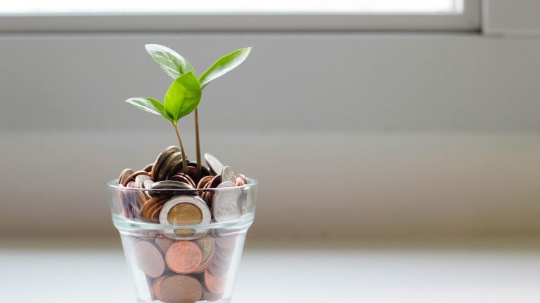 plant growing in coin jar marketing your business